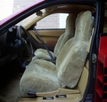 Auto / Truck / SUV Seat Covers