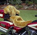 Motorcycles Seat Covers